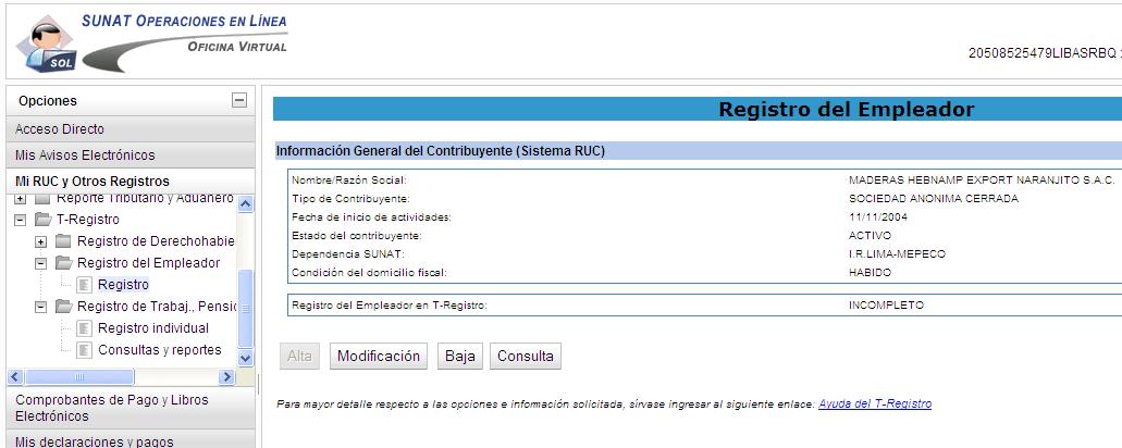 1.1 Como llenar el T Registro