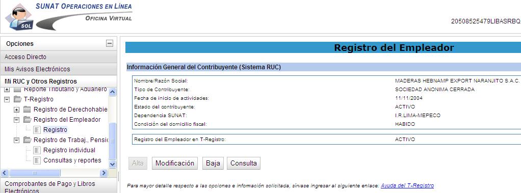 1.2 Como llenar el T Registro