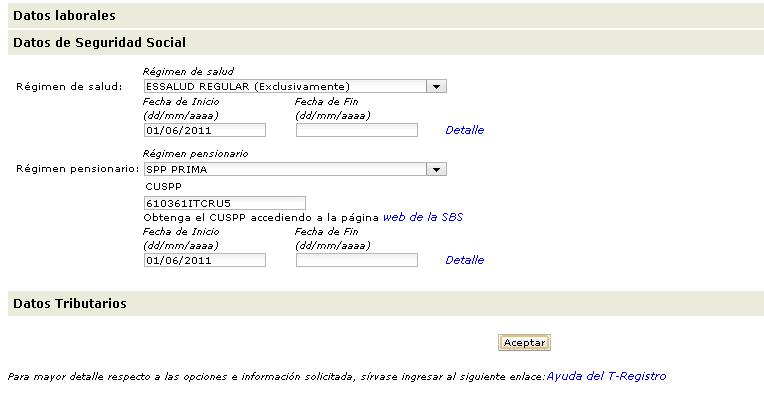 t registro11 Como llenar el T Registro