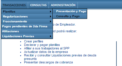 consulta-afp
