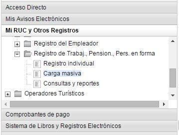 menu-t-registro