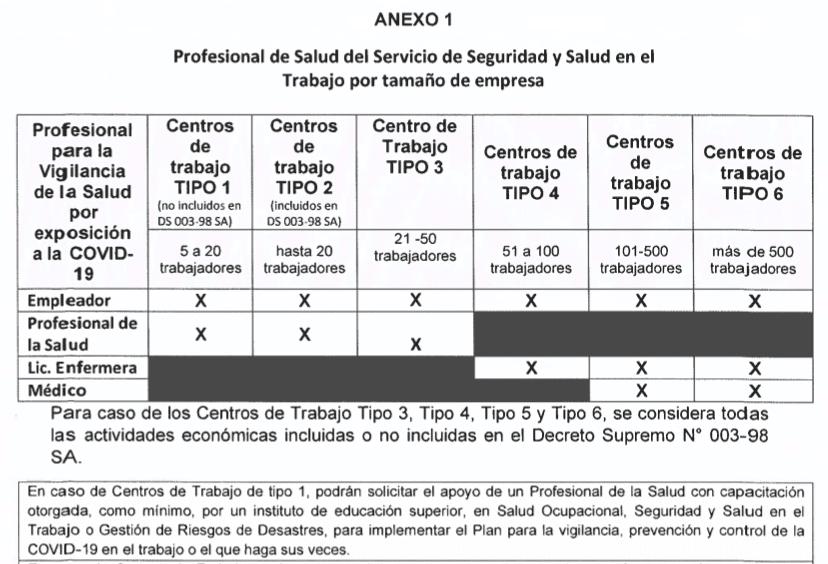 Anexo 1-Profesional de Personal de Salud