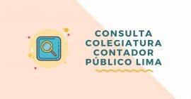 Habilidad de Contadores Publicos Colegiados de Lima