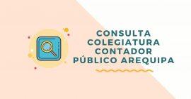 consulta colegiatura de contador publico arequipa