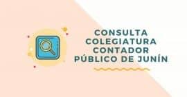 consulta colegiatura de contador publico junin