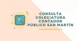 consulta colegiatura de contador publico san martin