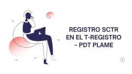 Registro SCTR en el T-Registro – PDT PLAME