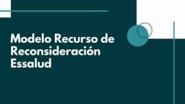 Modelo Recurso de Reconsideracion Essalud